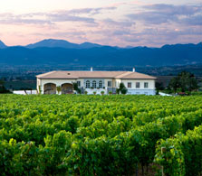Monefalco_winery_1